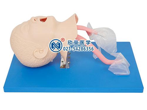 XM-XS儿童气管插管模型