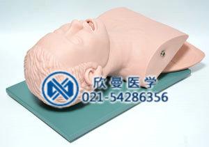 气管插管模拟人头部结构