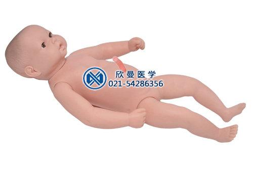 高级出生婴儿附脐带模型