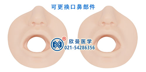 可更换口鼻部件