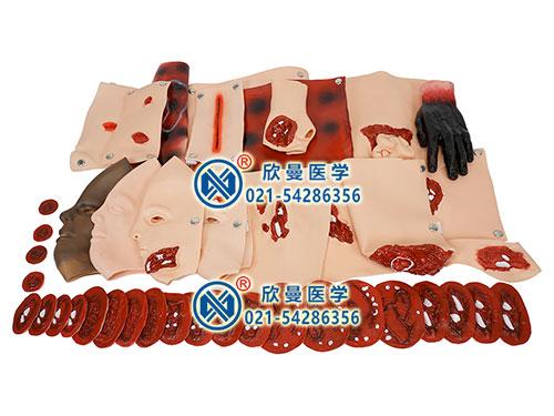 XM-CS43创伤模型组件 高级创伤评估模块