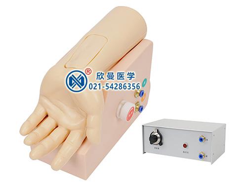 XM-S4B动脉血气分析训练模型,动脉血气分析监测考核指导模型
