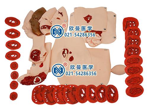 XM-CS34创伤模型组件 高级创伤评估模块