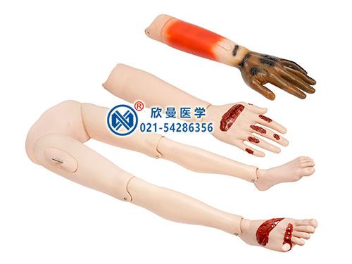 XM-CS3高级创伤四肢模型