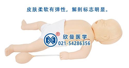 婴儿心肺复苏模拟人整体结构