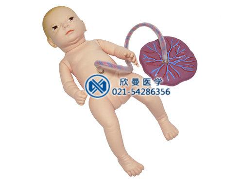新生儿脐带护理模型