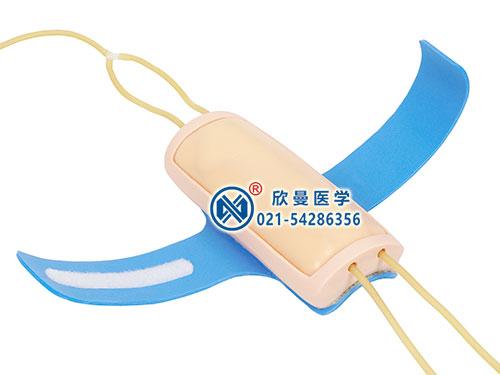 前臂静脉穿刺外套整体结构