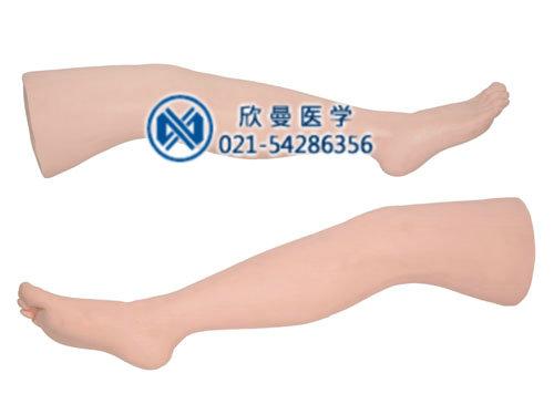 缝合练习腿模型