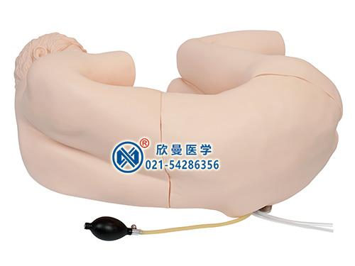 XM-YC腰椎穿刺训练模型腰椎穿刺训练仿真标准化病人,腰椎穿刺模拟人