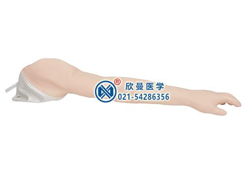 完整静脉穿刺手臂模型整体结构