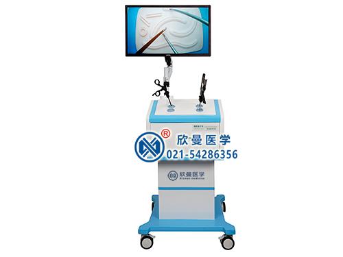 腹腔镜手术训练箱及系列模型,腹腔镜模拟训练器,腹腔镜手术训练模拟人