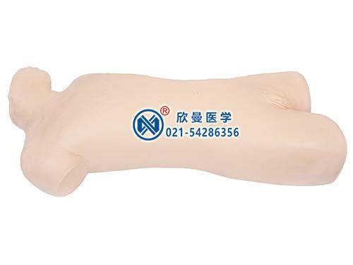XM-FQ腹腔穿刺模拟人,腹腔穿刺训练模型