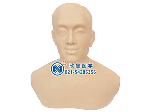 针灸头部训练模型