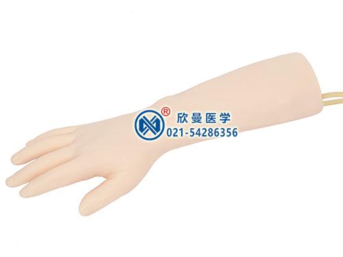 标准静脉输液手部模型