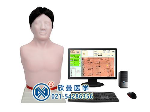 XM-65A多媒体经穴学及针刺仿真训练系统,人体仿真针刺穴位练习模型