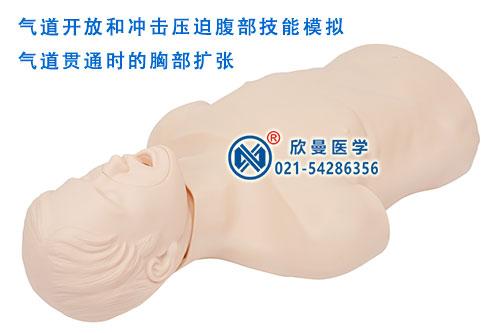 高级成人气道梗塞及CPR训练模型