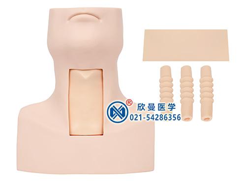 XM-50环甲膜穿刺及气管切开插管模型,环甲膜穿刺模型,环状软骨气管切开术训练模型