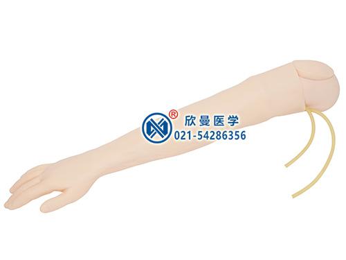 高级静脉穿刺手臂及肌肉注射模型整体结构