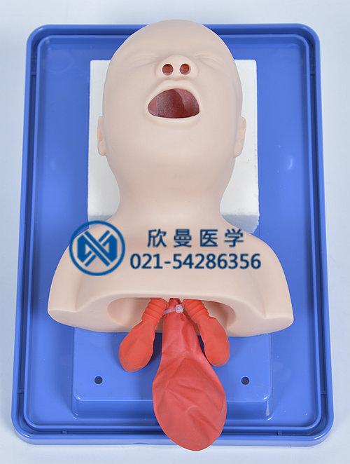新生儿插管模型具有逼真的新生儿解剖结构