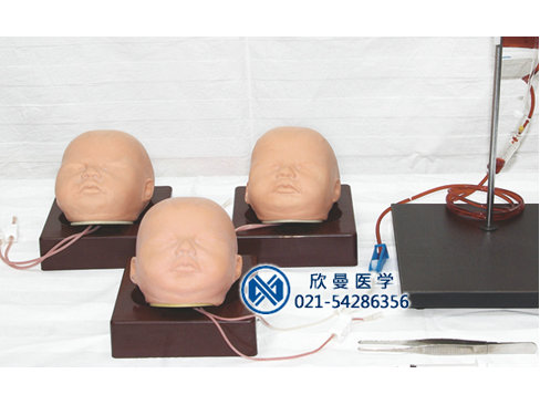 婴儿头皮静脉注射仿真模型