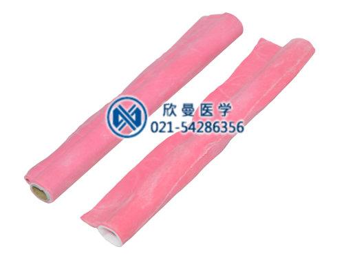 肠管吻合模型