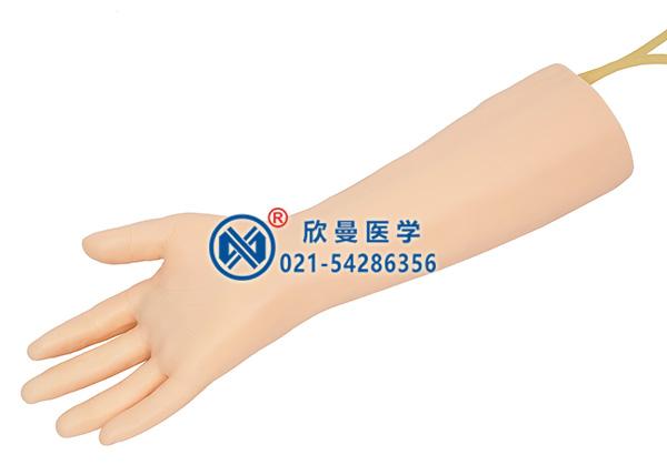 XM-S5M标准静脉输液手部模型