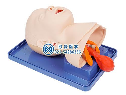婴儿气管插管模型整体结构