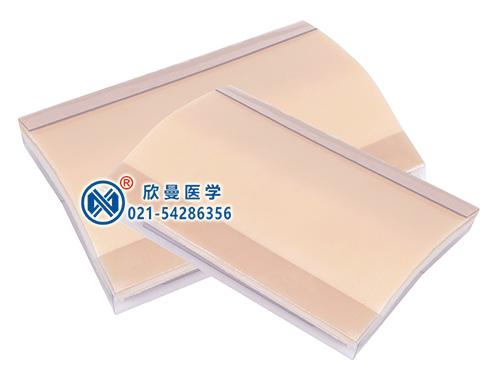 XM-FH皮肤缝合练习模块(附底座)