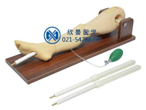 小儿骨髓穿刺及股静脉穿刺腿部模型