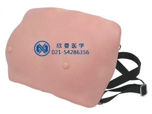 乳房检查模型