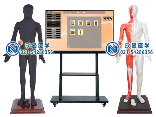 XM-55M55寸多媒体人体针灸穴交互数字平台