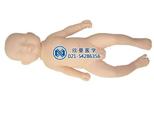 新生儿生长发育指标测量及护理模型