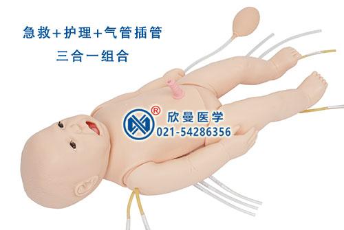 新生儿心肺复苏模拟人整体构造