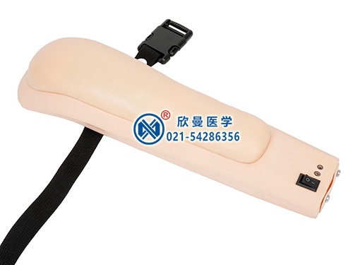 XM-SB高级电子上臂肌肉注射训练模型,佩戴式上臂肌肉注射模型