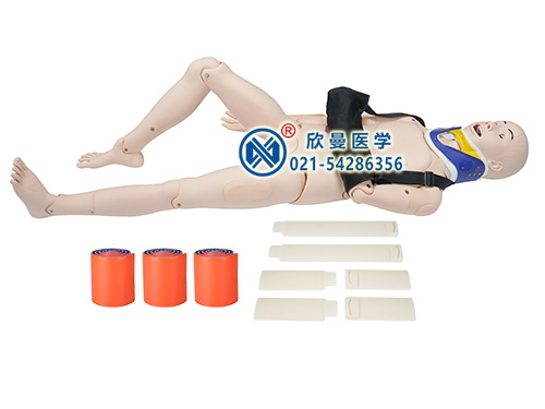 XM-GZ闭合式四肢骨折固定训练模型,模拟人