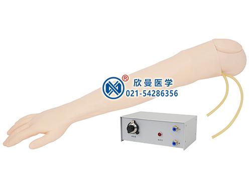 全功能静脉穿刺输液手臂模型整体特征