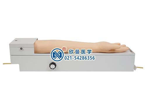 XM-S4A全功能旋转式桡动脉穿刺手臂模型