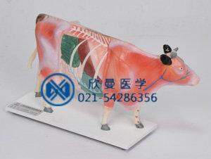 牛体针灸模型整体结构特征