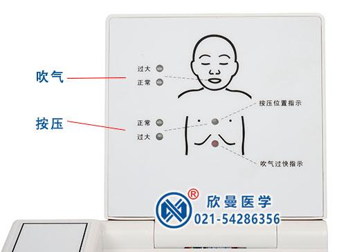 新生儿窒息复苏模型电子显示器