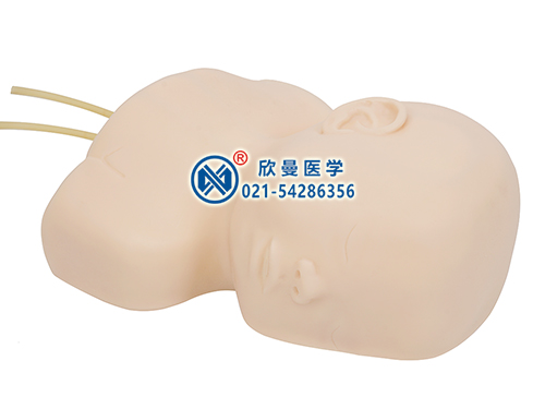 XM-T2婴儿头皮静脉穿刺训练模型,小儿头皮静脉穿刺模型