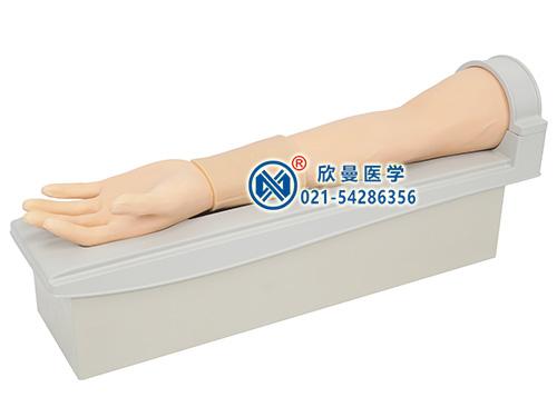 旋转式皮内注射及静脉穿刺手臂模型整体构造