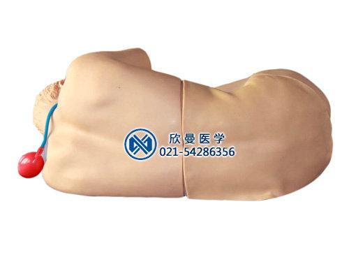 腰椎穿刺模拟人