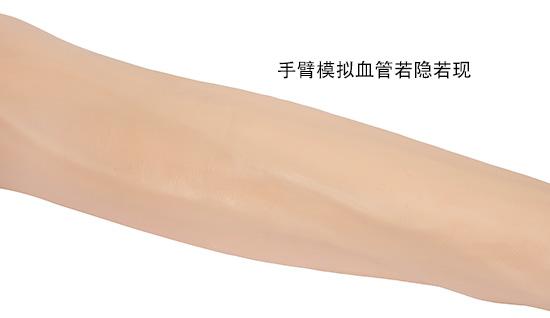 静脉穿刺手臂模型