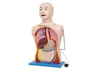 高级鼻胃插管及口腔护理模型人