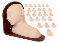 高级耳部检查操作模型(25种病变)
