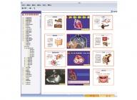 医学多媒体素材库及教学平台