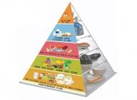 膳食宝塔营养食物交换份模型(膳食平衡宝塔模型)