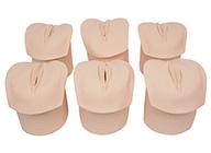 产前宫颈变化与产道关系模型